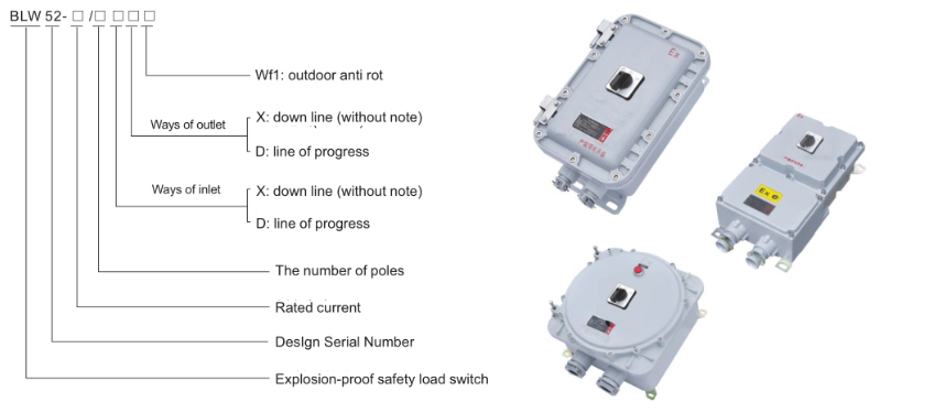 BLW52 Explosion Proof Safety Load Switch