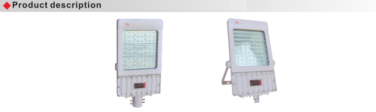 BAT55 Explosion Proof Energy-Efficient Led Floodlight